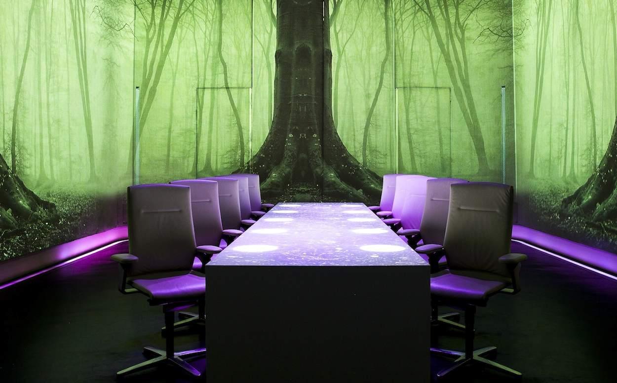 UV SCENARIO: FOREST, WOOD
